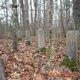 Pickel Cemetery