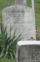 Jane C. Craig
