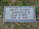 Abner Watkins Anderson, Jr