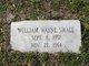 William Wayne Small