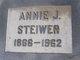 Profile photo:  Annie Jeriah <I>Hoover</I> Steiwer
