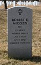 Robert E Micozzi
