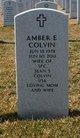 Amber Elizabeth <I>Long</I> Colvin
