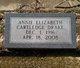 "Annie Elizabeth ""Annie Bess"" <I>Cartledge</I> Drake"