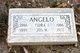 Joseph W Angelo