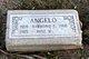 Raymond F Angelo