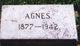 Agnes M Lauder