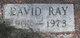 David Ray Cook