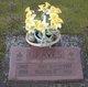Pauline Nellie <I>Endicott</I> Graves