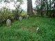Naftzinger Family Cemetery