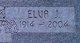 Elva J Webber