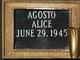 Profile photo:  Alice Agosto