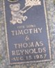 Timothy And Thomas Reynolds