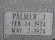 Palmer J Martin