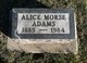 Profile photo:  Alice M. <I>Morse</I> Adams