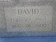 David C Littlefield