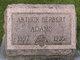 Arthur Herbert Adams