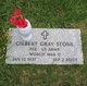 Gilbert Gray Stone