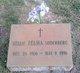 Nellie Zelma <I>Sparkman</I> Dame
