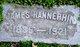 James F Hannephin, Sr