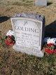 "Mary E ""Nellie"" <I>Golding</I> Beatty"