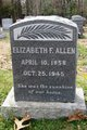 Profile photo:  Elizabeth F Allen