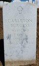 Carleton Burgess