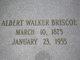 Profile photo:  Albert Walker Briscoe
