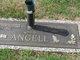 Profile photo:  Carol R. Angell