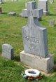 Profile photo:  William Stanton Field