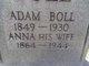 Profile photo:  Adam Boll