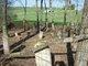 Joiner Family Cemetery