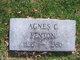 Profile photo:  Agnes C. Fenton