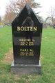 Profile photo:  Arlene L. Bolten