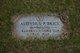 Aloysius P Brick