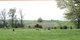 Benbow Cemetery