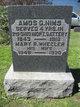 Amos Gould Nims