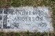 Andrew P. Anderson