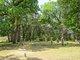 Conoley Cemetery