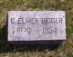 Profile photo:  C Elmer Bigger