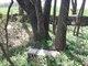 Meguiar Cemetery
