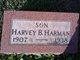 Profile photo:  Harvey B Harman
