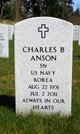 Profile photo:  Charles Buell Anson