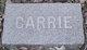 Profile photo:  Carrie E <I>Littlefield</I> Ames