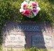Profile photo:  Lee Vest Apperson