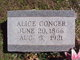 Profile photo:  Alice <I>Andrews</I> Conger