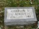 Charles S. Ackley