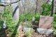 Brewster Cemetery