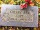 Cherri Ann Cupp