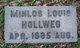 Minlos Louis Hollweg
